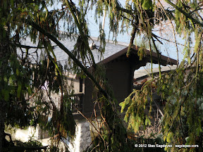 Freddie's mysterious Lake House as seen through the trees branches
